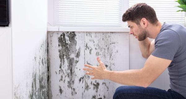 Conseils sur le traitement d'une remontée capillaire dans les murs